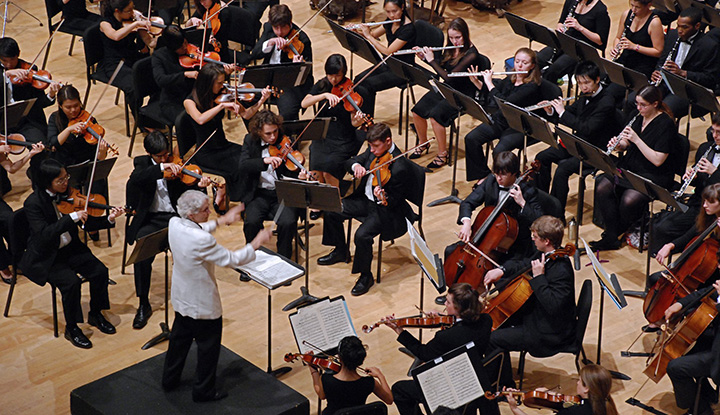 Image: LIU Post Chamber Orchestra Performing